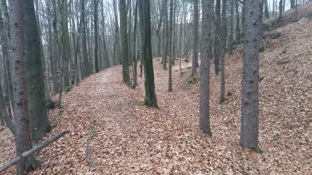Fränkischer Gebirgsweg - Ruine Hollenberg