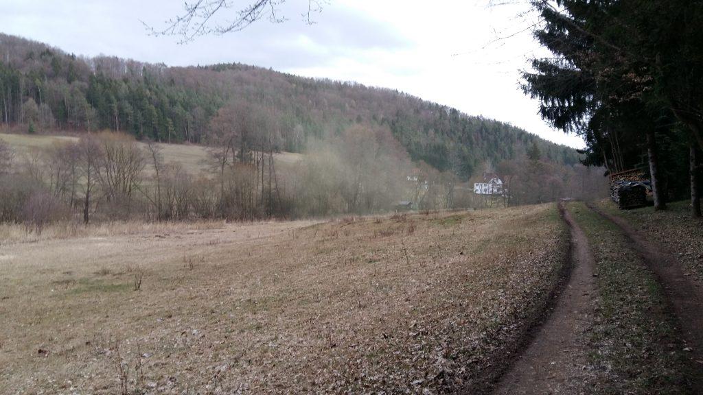 Fränkischer Gebirgsweg Pollenflug